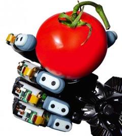 BioTac_Tomato